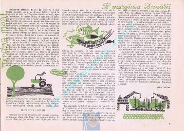 Luminita 1964-01 05